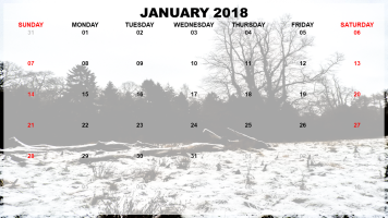 January 2018 Example